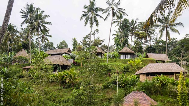 Venez découvrir les richesses d'Ubud, sur l'île de Bali en Indonésie