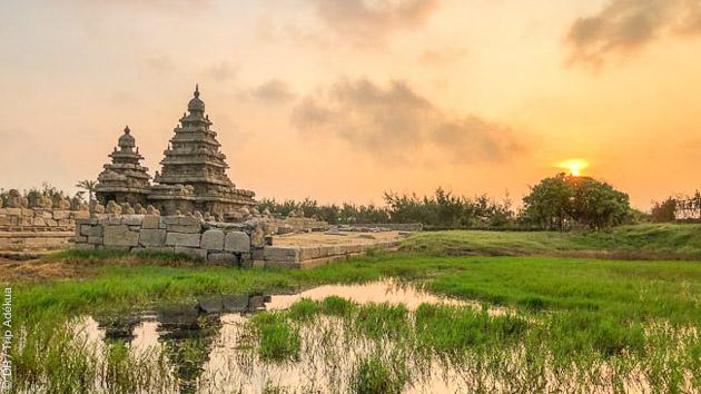 Voyage au cœur de la spiritualité et des racines du yoga en Inde