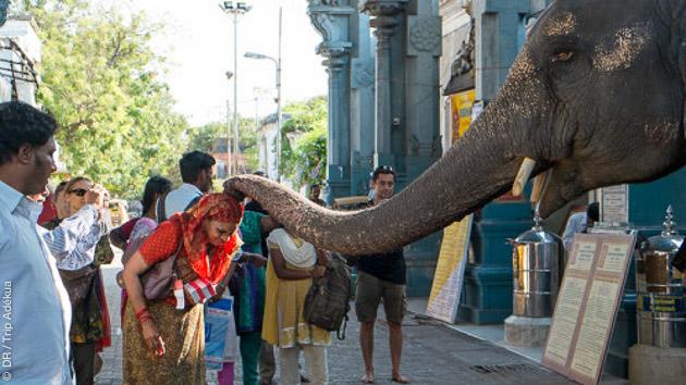 Votre séjour en Inde entre culture et pratique du yoga