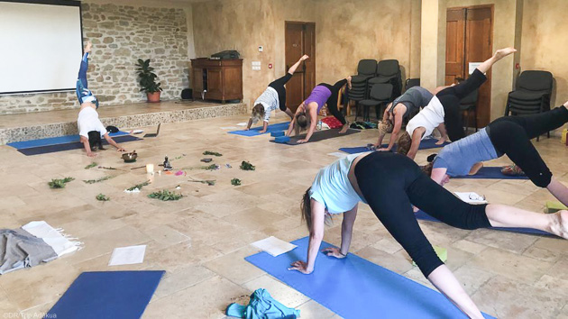 Un stage de yoga unique en Porvence