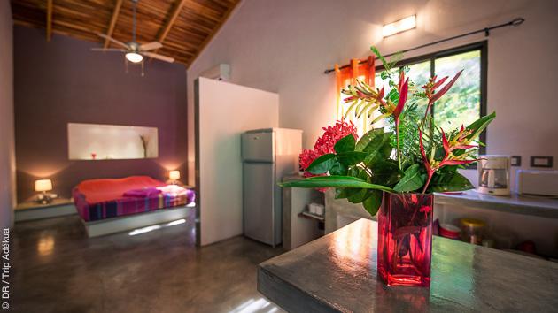 Votre eco-lodge tout confort avec jardin tropical et piscine
