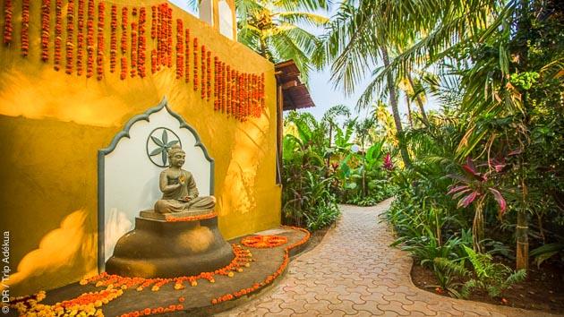 Un séjour au pays du yoga à Goa en Inde