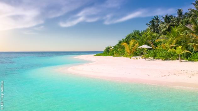 Enchaînez les asanas sur les plages paradisiaques des Caraïbes
